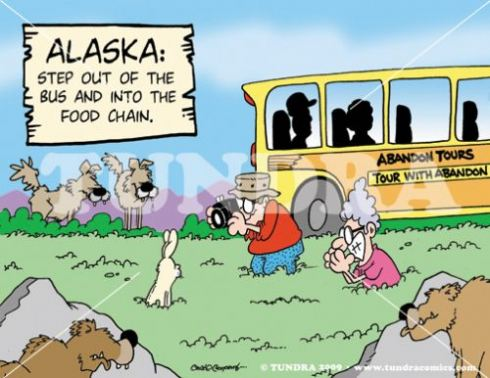 View polar bear s at barrow alaska exploredreamdiscover for Alaskan cuisine history