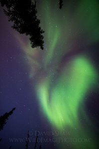 How I photograph the aurora borealis