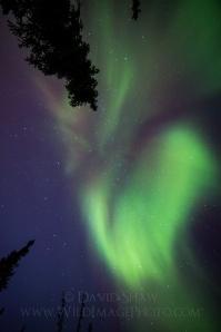 How I photograph the aurora borealis