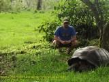 Galápagos Islands: Walking amongst giants with the Galápagos landtortoise