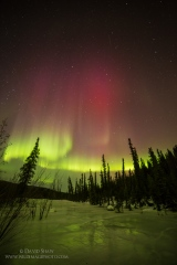 March is the best time for incredible northern lights in Fairbanks, Alaska