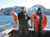 Deep Sea Fishing in Alaska (Kenai Peninsula)