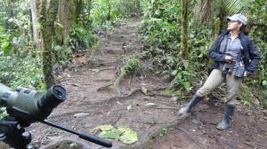 Guided birding tours to Galapagos and Mindo Ecuador