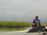 Swimming with Galapagos sea turtle(video)
